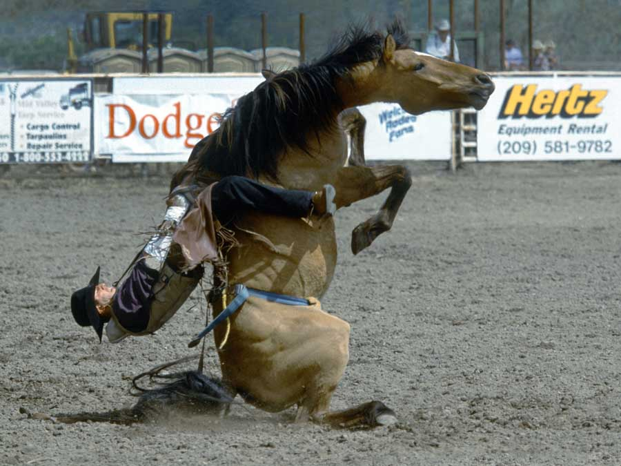 bronc hanging matted  -11  12x16 good